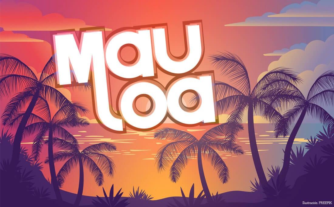Montaje portafolio MAULOA 2